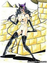 Batman and Catwoman wild sex - 5 cartoon pictures
